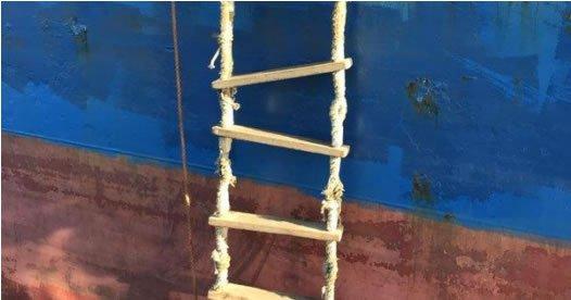 Security Ladder